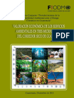 ValorEcono PSA MicrocuencasGUATE