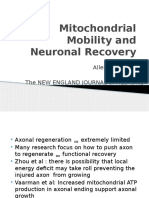 Mitochondrial Mobility and Neuronal Recovery