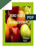 prof_priscila_apresentacao_angiosperma.pdf