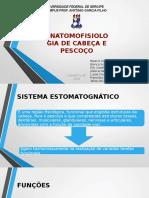 Slide Pronto Ok