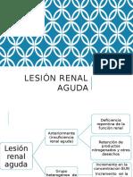 Lesión Renal Aguda-1