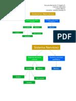 Guía complementaria Sistema Nervioso