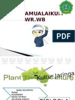 pptbiodaskulturjaringan-160117234121