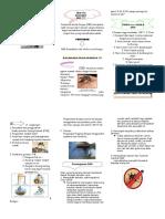 Leaflet DBD labday cemara room.doc