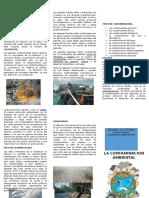 Triptico de Contaminacion y Cambio Climatico