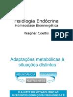 001Homeostage BionergéticaWagner