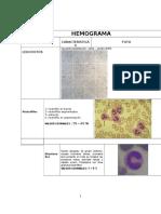 Hemograma Con Fotos