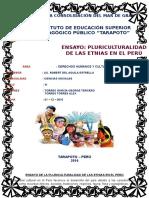 Ensayo de La Pluriculturalidad de Las Etnias en El Perú