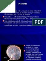5-Anexele embrionare-12.ppt