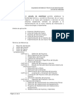 Esquema Informe PI FIUCSS - Estudio de Viabilidad