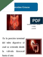 Intestino Grueso ppt. Cirugia .ppt_0