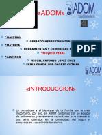 332973499-Adom-Proyecto-Final-Migue-Erika.pdf
