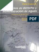 Traduccion_de_Caponera_Dante_Principios.pdf