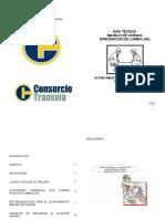 Guía técnica levantamiento de cargas.doc