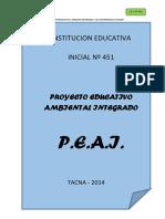 Peai i.e.i. 451 Tacna