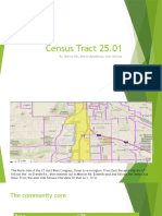census tract 25 community report project