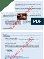 329636319-Practica-3 (1)