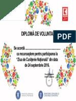 Diploma Voluntar