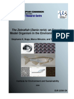 The Zebrafish Danio Rerio an Emerging Model Organism