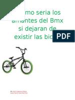 Revista de las BMX