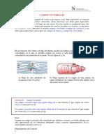 CAMPOS VECTORIALES_INTEGRALES DE LINEA.pdf