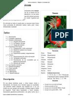 tomate.pdf