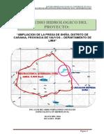 1.-Informe Hidrologia Represa Shiña
