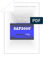 Manuel SAP2000