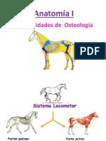 Generalidades Osteologia y Artrologia