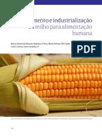VA 13 Industrializacao-Artigo2