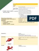 aorta and ilia artery modulo 1
