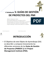 PMI PPROJECTSS