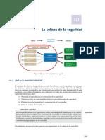 Capítulo 10 Factores Humanos y Organizacionales en Seguridad