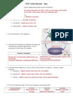 eoc cells review key