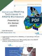 Adv WBMeshing CAEA