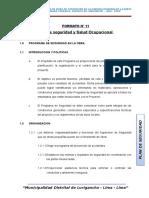 Formato N°11 Plan de Seguridad en Obra