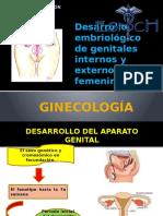 desarrolloembriologico
