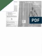 sindromes_dolorosos_hombro.pdf