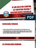 PERICIAS EN DELITOS CONTRA LA LIBERTAD SEXUAL