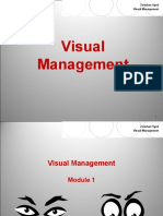 Visual Management 211pages