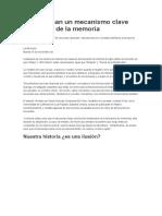Desentrañan Un Mecanismo Clave Del Telar de La Memoria -Resumen