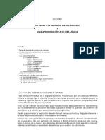 01-01 Causa y Razon Del Proceso- Texto Principal Obligarotorio-Lec(1)