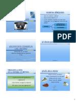 3 META E INDICADORES.pdf