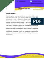 Descripción de areas.pdf