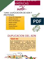Replicacion de ADN