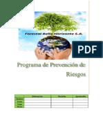 Programa de Prevencion de Riesgos ROSARIO