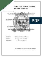Microscopio metalografico