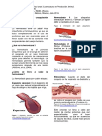 Bioquímica de La Coagulación