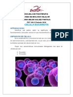 Maqueta Celular Reporte