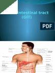Gastrointestinal Tract (GIT)